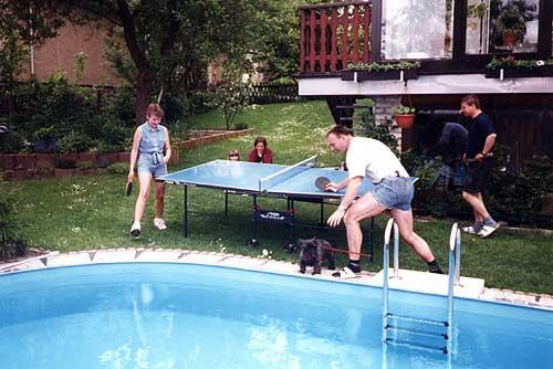 Ferienhaus otto ein ort zum wohlf hlen im thueringer wald - Otto swimmingpool ...